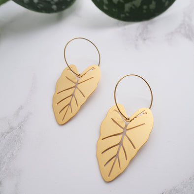 Gold Alocasia Hoop Earrings