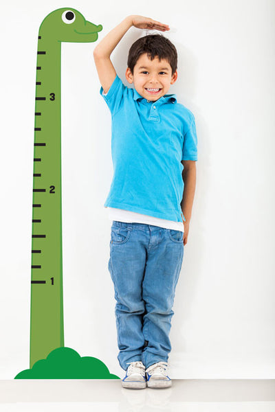 Dino Growth Chart Boy
