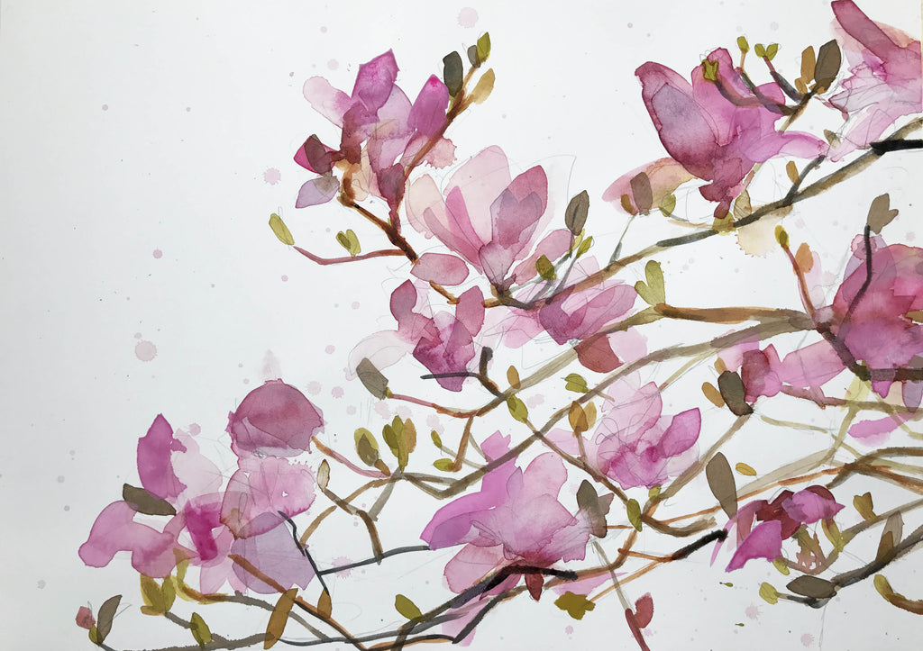 Watercolor Magnolias