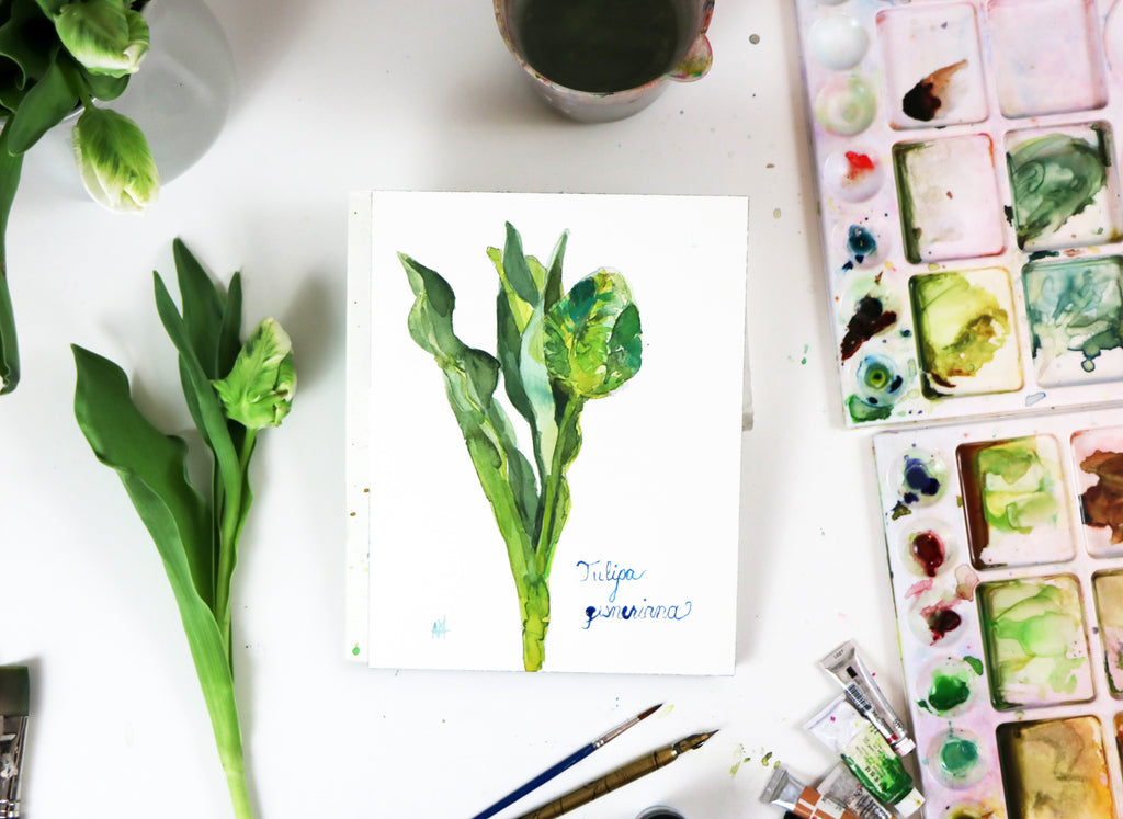 Painting Botanical Flowers in Watercolor