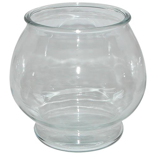 Glass Betta Bowl - 1 Gallon Footed