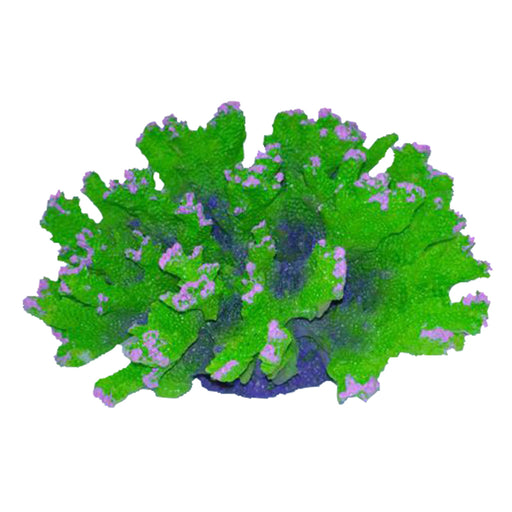 Ornament Coral Australian Branch - Green