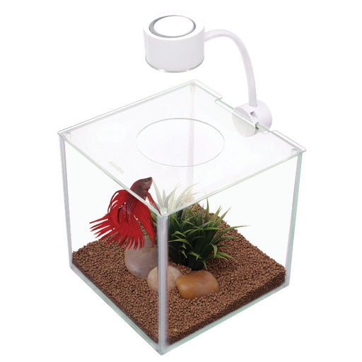 13485 hagen marina betta cubus tank aquarium led 015561134859 glass cube