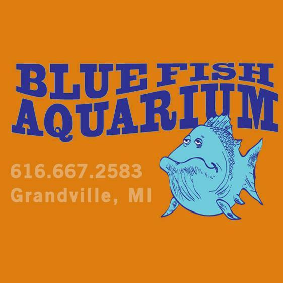 Blue Fish Aquarium Online Gift Card