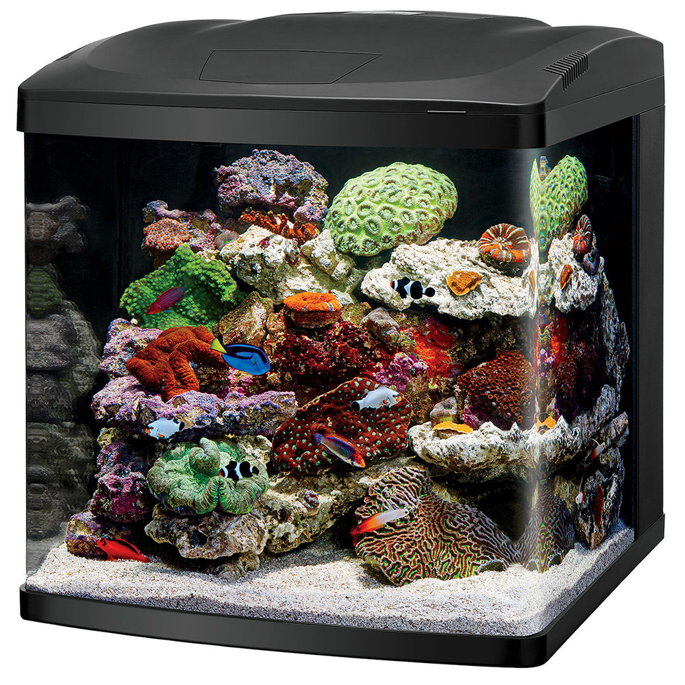 Coralife 32 Gallon LED BioCube Saltwater Aquarium Kit