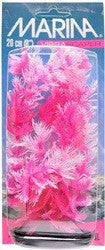 Marina VibraScaper Plant Foxtail Hot Pink & White 8 Inch