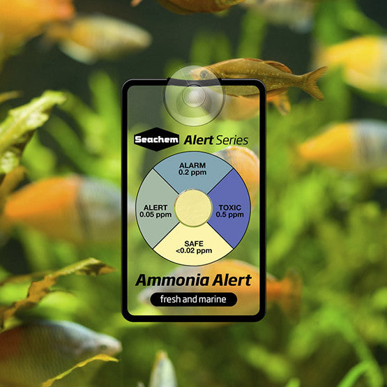 Seachem Test Ammonia Alert Badge