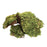 Zoo Med Frog Moss Substrate 80 cu in