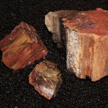 Bulk Rock Rainbow Petrified Wood per Ounce