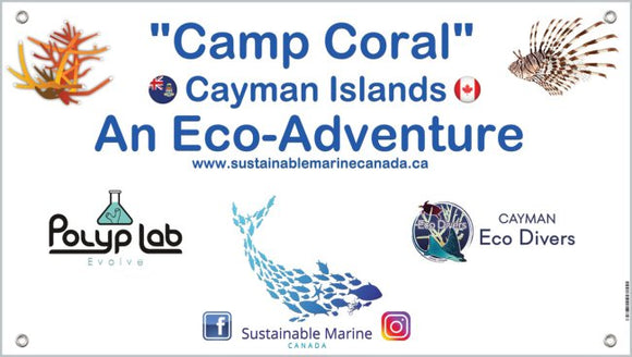 Camp Coral - An Eco Adventure
