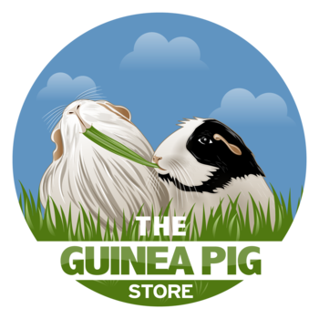 The Guinea Pig Store