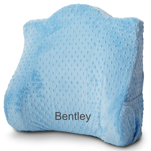 Removable Slipcover for Back Buddy® (More Colors Available)