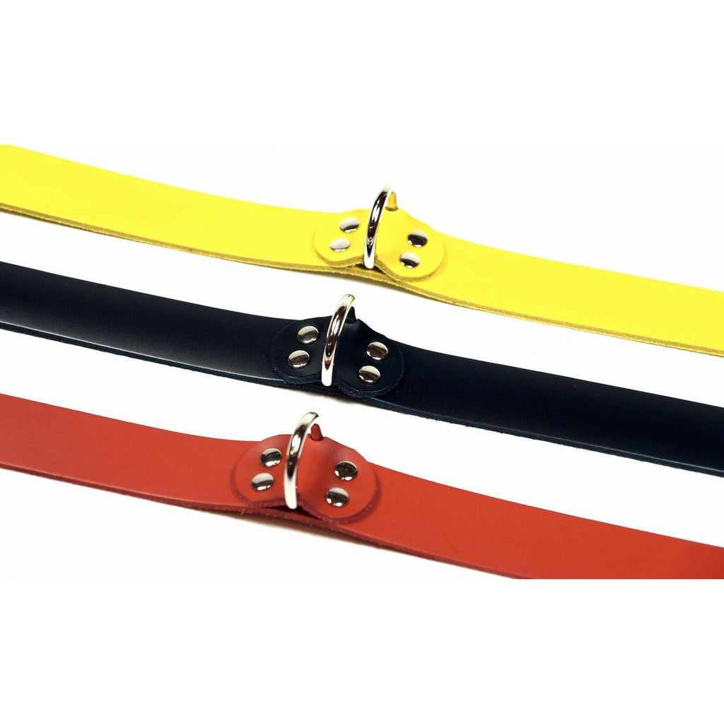 Wanda's Select D-Ring Collars - Wicked Wanda's Inc.
