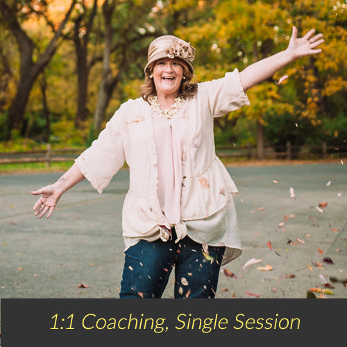Single Coaching Session - 2hrs