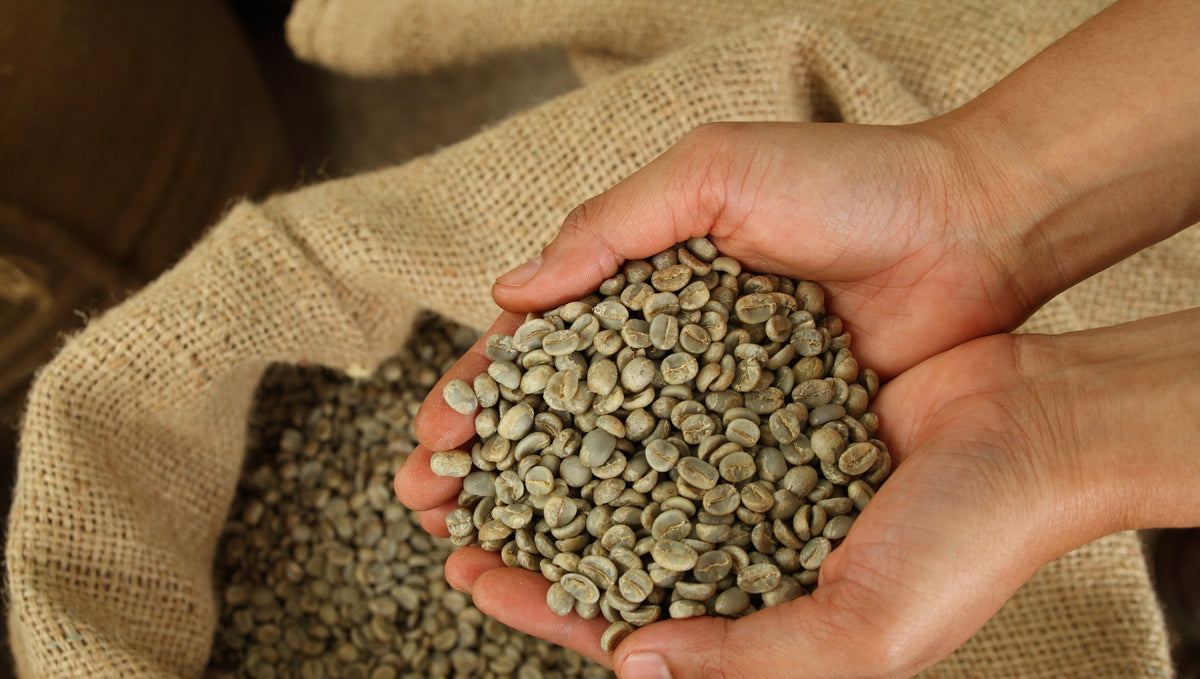 Superfood: Green Coffee Beans