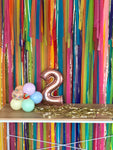 'Fiesta' Fringe Garland/Backdrop