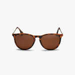 Roma Turtle Brown / Brown