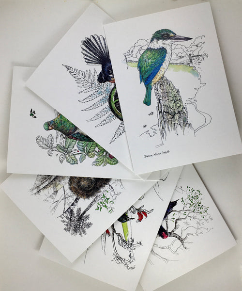 NZ Bird cards