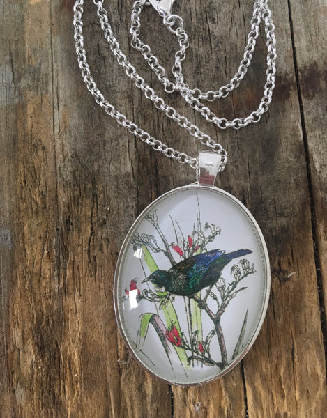 NZ Native Birds Jewellery- Pendants and Brooches