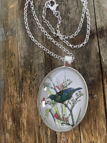 Jewellery - New Zealand Tui Pendant