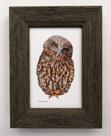 Wooden Framed NZ Native Owl Morepork