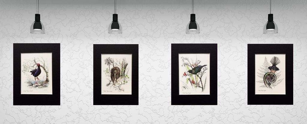 Native birds, mounted