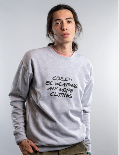 Friends Could I Be Wearing Any More Clothes Sweatshirt - Gray