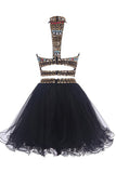 Two-piece High Neck Navy Blue Organza  Homecoming/Prom Dresses ED67