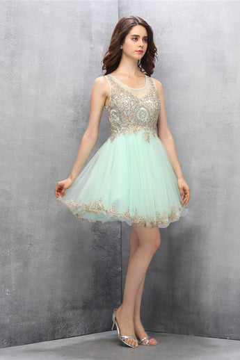 A-line Scoop Short Mint Tulle Homecoming Dress with Appliques ED85