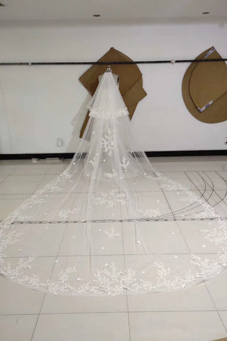Two Tiers Ivory Lace Appliqued Cathedral Length Tulle Wedding Veil, Charming Bridal Veil V038