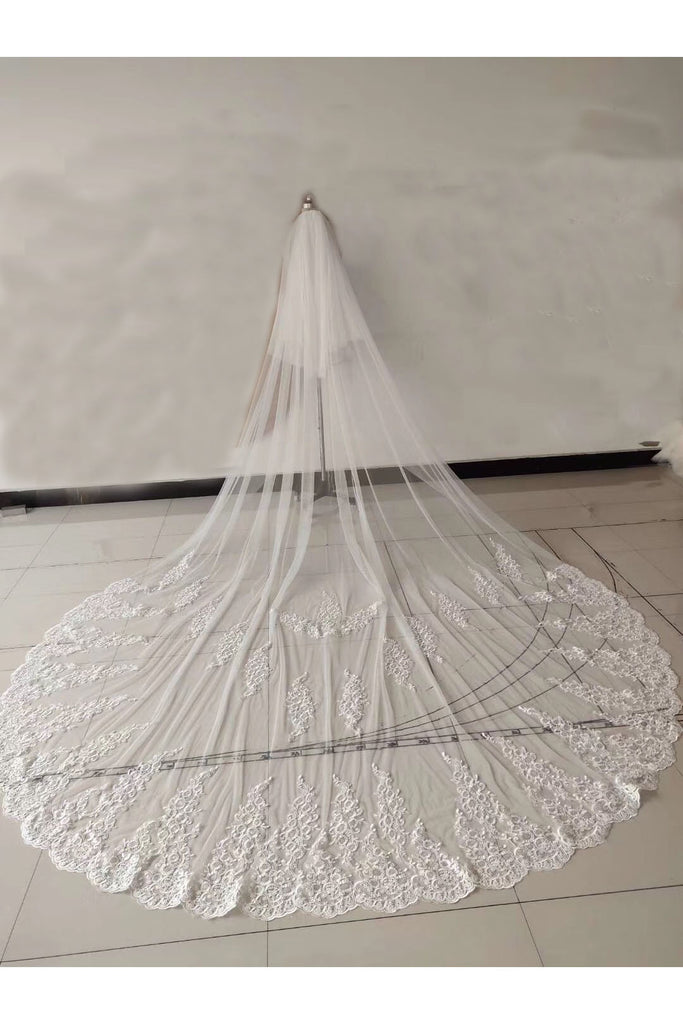 Ivory Lace Appliqued Cathedral Length Tulle Wedding Veil, Charming Bridal Veil V037
