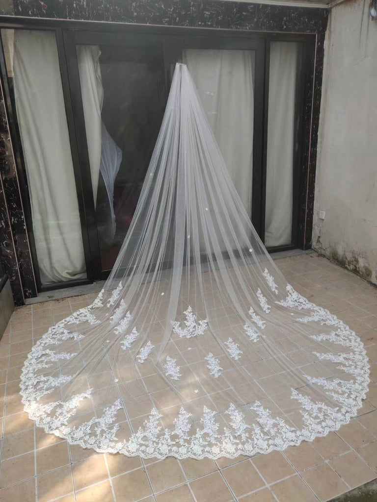 Beauty One Layer 3M Long Wedding Veils With Lace Appliques V0051