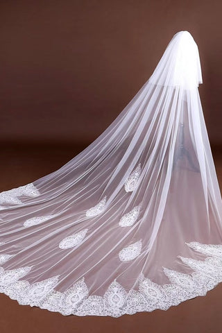 Elegant Long Tulle Wedding Veils With Lace Appliques V0053