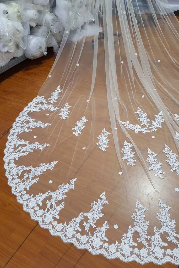 Ivory Lace Appliqued Cathedral Length Tulle Wedding Veil, Bridal Veil V032