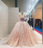 Ball Gown Sleeveless Lace Appliqued Tulle Prom Dresses, Quinceanera Dress Wedding Dress N1046