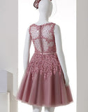 Dusty Pink A-Line Sleeveless Tulle Homecoming Dress,Lace Applique Homecoming Gown,N322