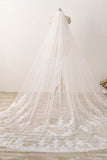 3M Long Lace Appliqued Cathedral Veil for Wedding, Romantic Bridal Veil
