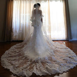 Ivory 3.5M Long Cathedral Length 2 Tiers Lace Tulle Bridal Wedding Veil With Comb,V013