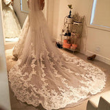 Ivory Cathedral Long Wedding Veils 1T Appliques With Comb Bridal Ivory Lace Veils,V015