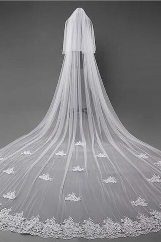 Ivory Lace Appliqued Cathedral Length Tulle Wedding Veil, Tulle Bridal Veil V033