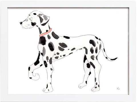 Dalmation Watercolor