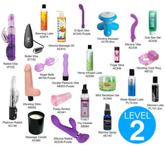 Home Sex Toy Party Kit- Level Two - Diddleworld.com