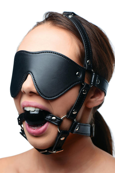 Blindfold Leather Harness with Ball Gag