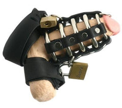 Strict Leather Gates of Hell Chastity Device - Diddleworld