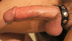 Speed Snap Cock Ring - Diddleworld.com - 1