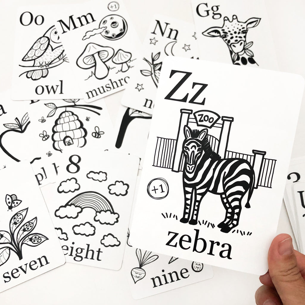 Alphabet & Number Flash Cards Wholesale