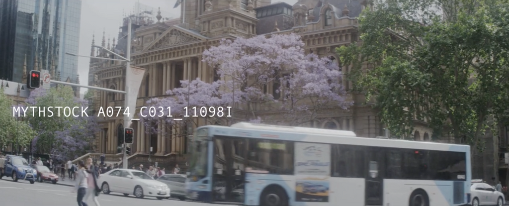 Sydney CBD summer scene with jacaranda tree and colonial buildings - hand-held shot