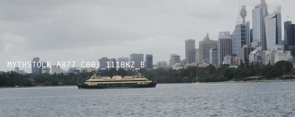 A ferry glides across Sydney Harbour in front of the CBD foreshore (Part 2)- hand-held shot