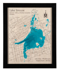 Laser Multicolor Print Map 11 x 14 (Black frame with distressed edges)
