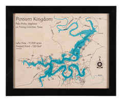 Laser Multicolor Print Map 14 x 18 (Black frame with distressed edges)